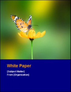 Are you Making these Mistakes when Writing White Papers?